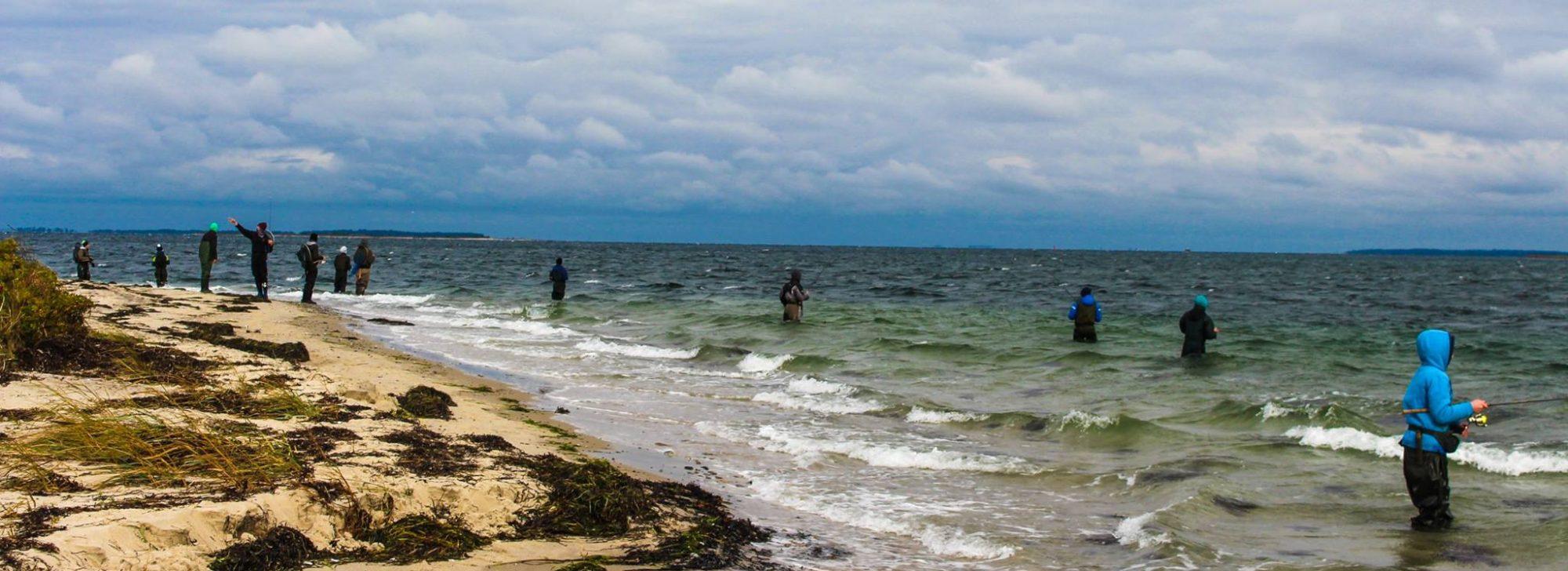HSTE-Fishing – Offizielle Webseite